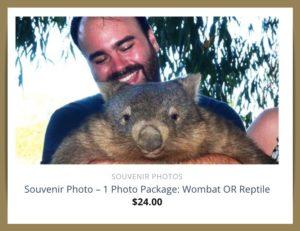オーストラリア ウォンバット 抱っこ 動物園
