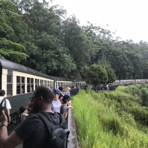 キュランダ  列車 感想 旅行記