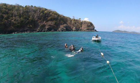 リペ島のアクティビティ ダイビング